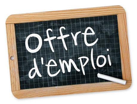 Offres d'emploi – Mis à jour le 09/04/2021