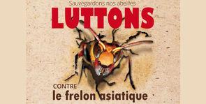 Prévention, surveillance et lutte contre le frelon asiatique en Auvergne Rhône-Alpes